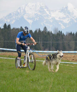 Cykling/kickbike