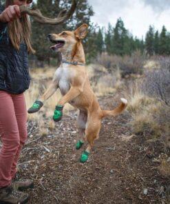 Sko og strømper